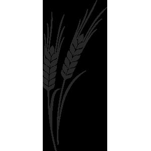 Wheat bran.